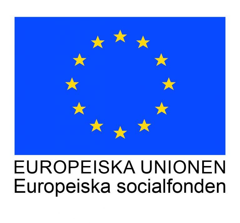 europeiska unionen europeiska socialfonden